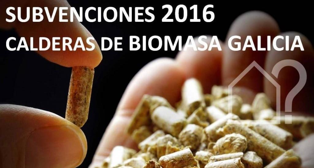asesorArq_BIOMASA_2016